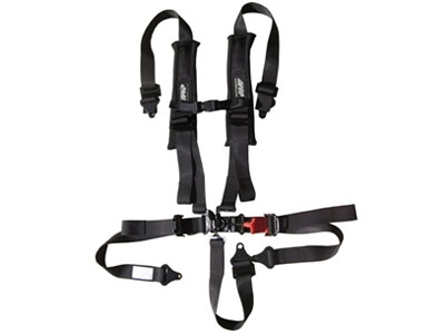 Harnesses and Seatbelts