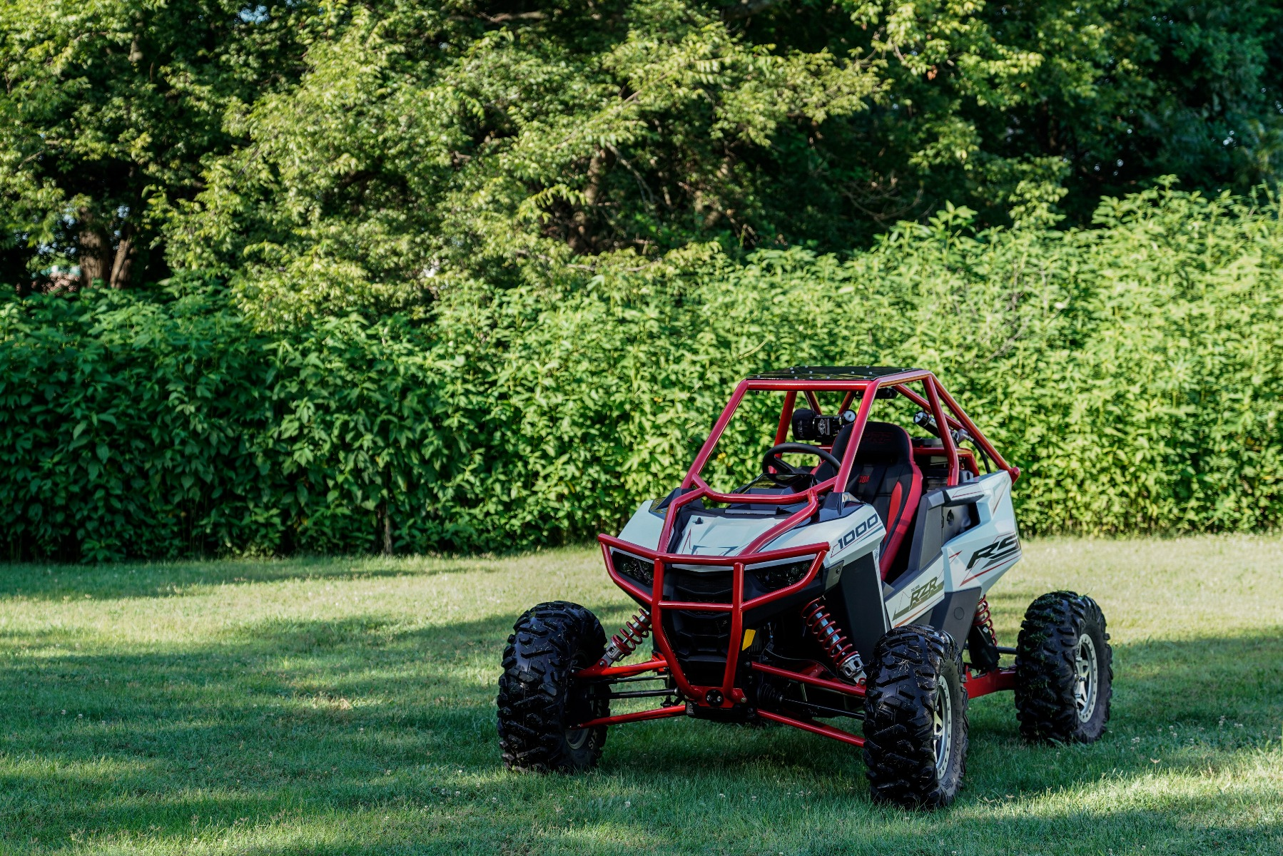 Polaris RZR RS1 Roll Cage in grass Image 3