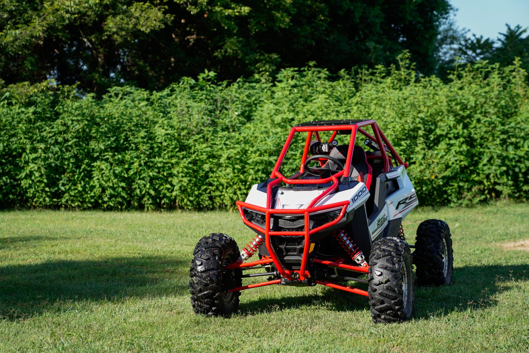 Polaris RZR RS1 Roll Cage in grass Image 4