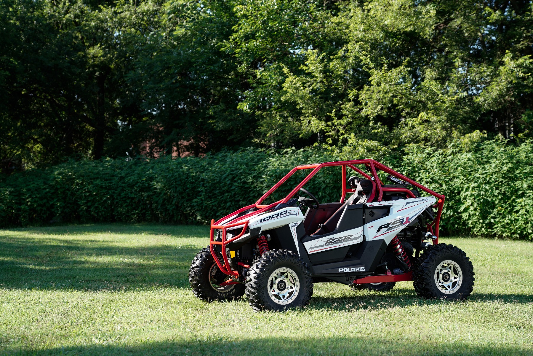 Polaris RZR RS1 Roll Cage in grass Image 6