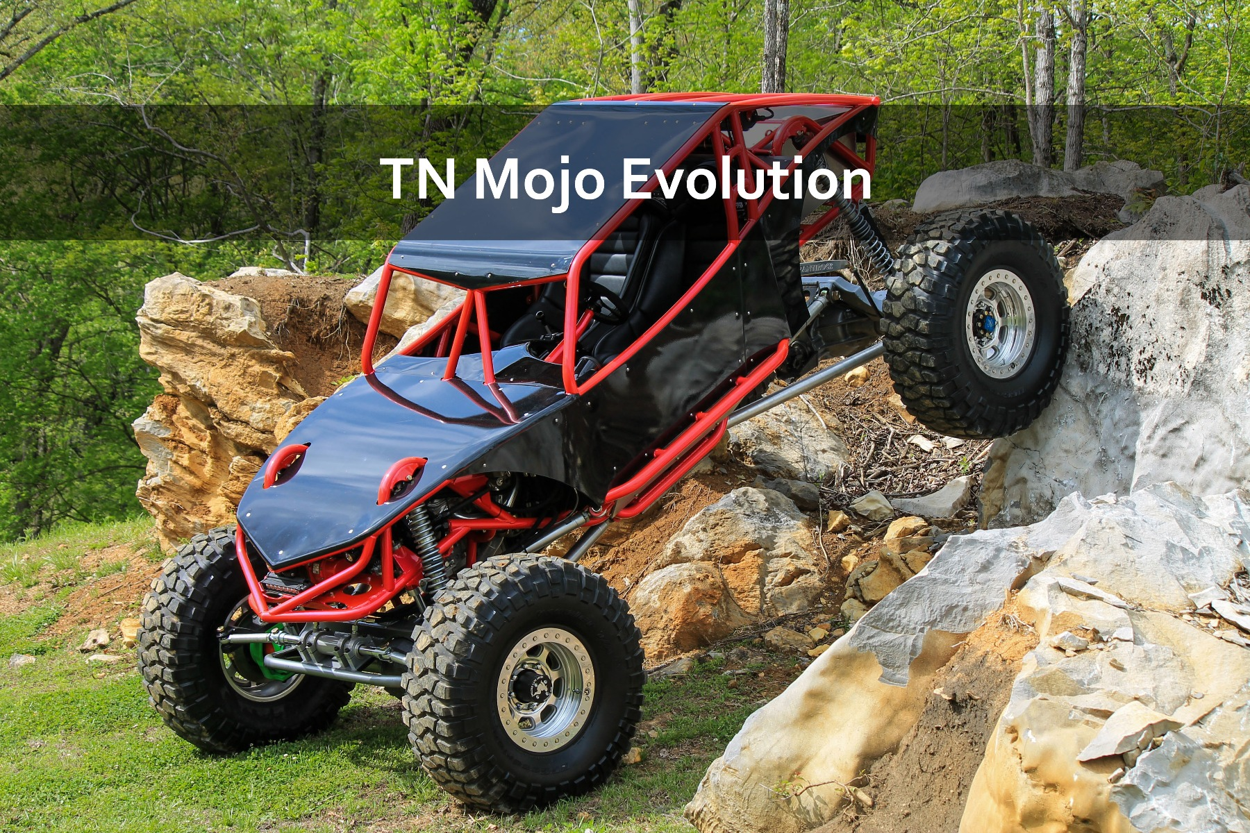 TN Mojo Rock Bouncer Rock Crawler Buggy